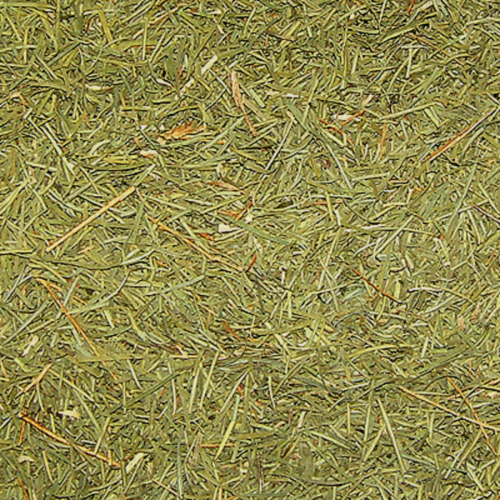 티트리잎 1kg (Melaleuca Alternifolia (Tea Tree) Leaf Powder) 국산